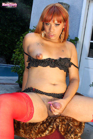 Brazillian tranny free movies