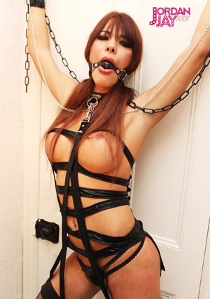 Whips chains Bondage