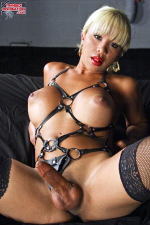 Dalton recommend best of shemale extreme bondage